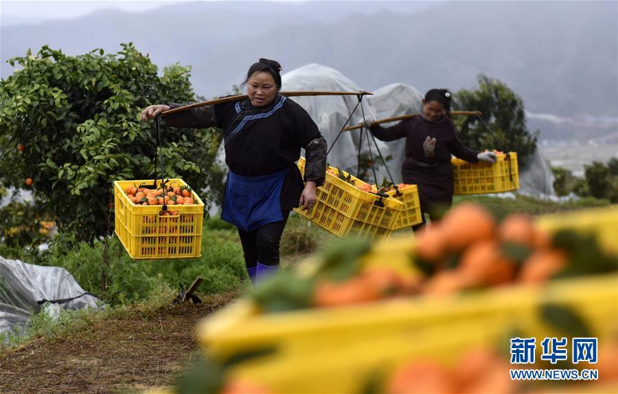 广西强降雨造成30余万人受灾,1人因雷击死亡