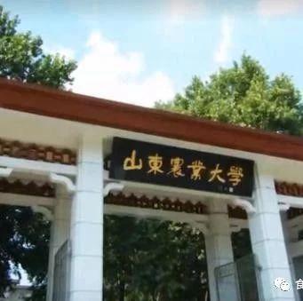 山东农业大学2019年公开招聘食品相关专业博士7人