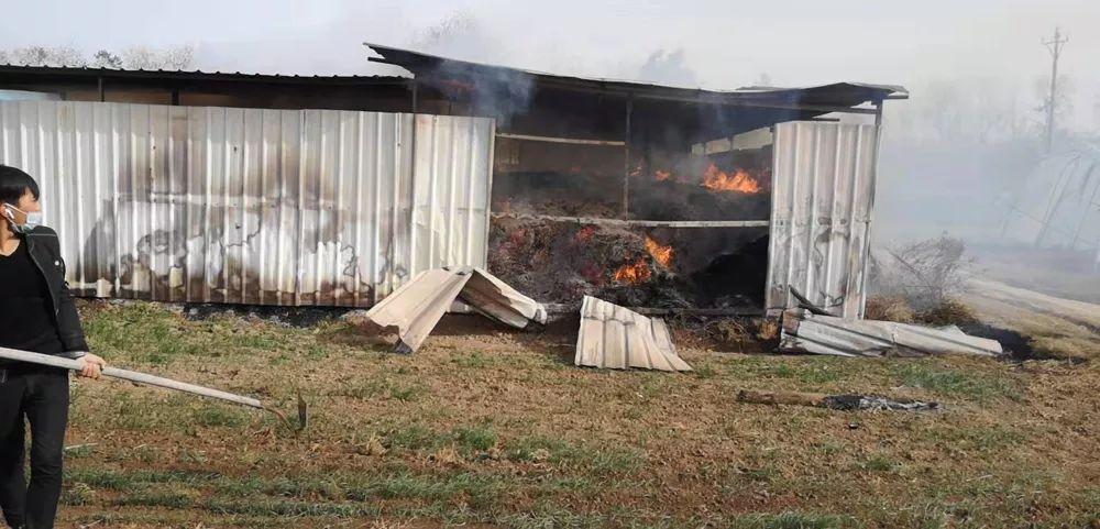 养殖场着火!阜阳警方迅速行动…