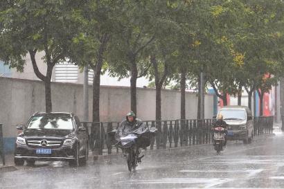 """受台风""""摩羯""""影响崇明浦东宝山昨普降大到暴雨 今天傍晚前后对上海影响全部结束"""
