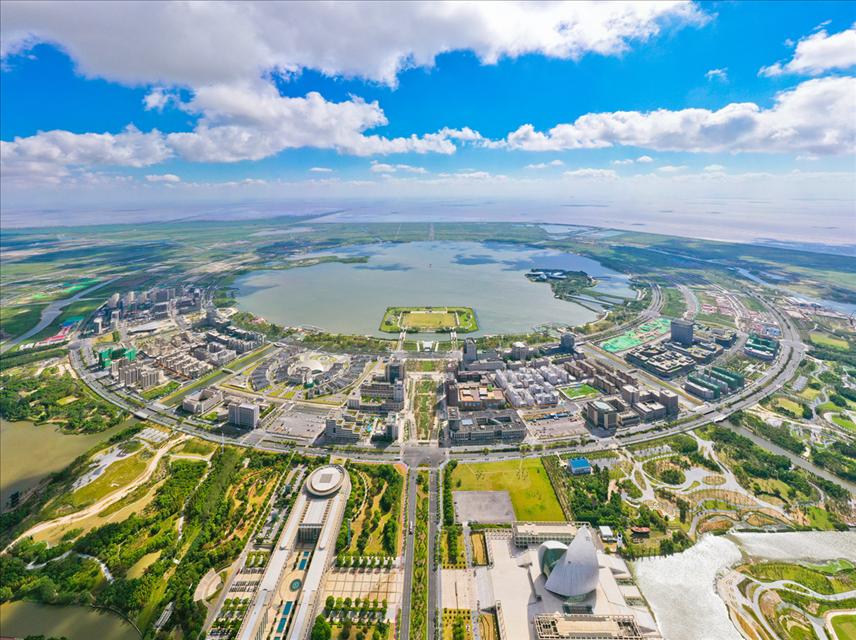 上海自贸区临港新片区发布促进产业发展的的系列政策