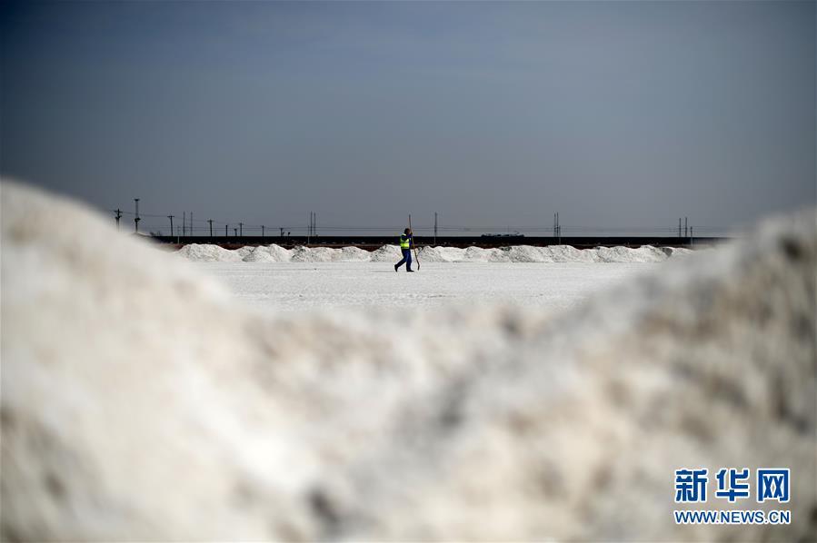 Twitter揭秘:后疫情时代下 中国跨境电商如何破局?