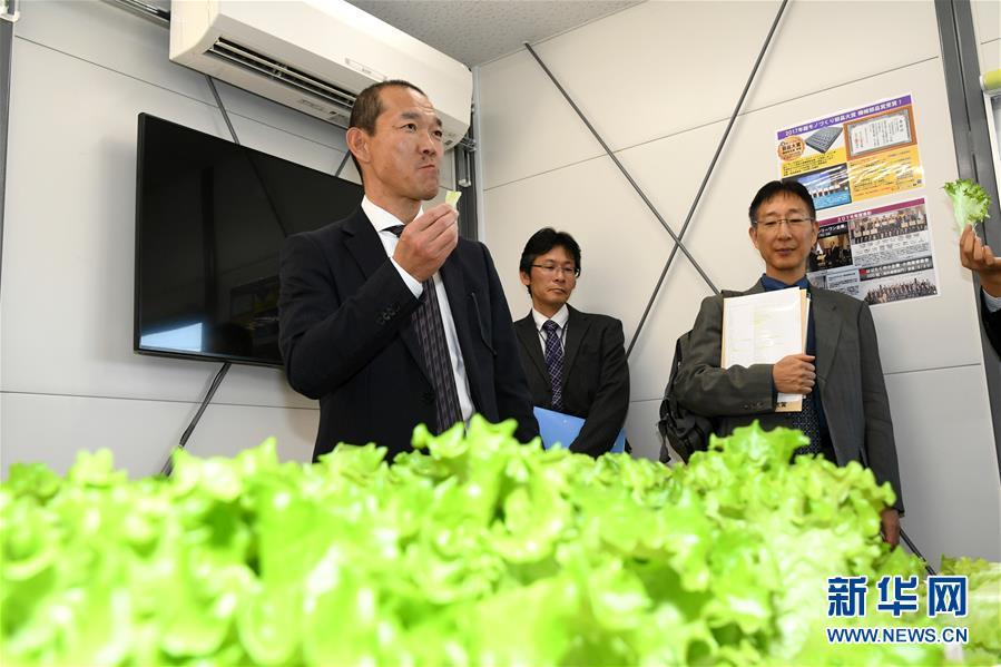 日本资源在线高速播放_日韩精品资源在线播放_在线播放永久资源免费