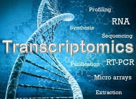 转录组学研究领域重要研究进展一览