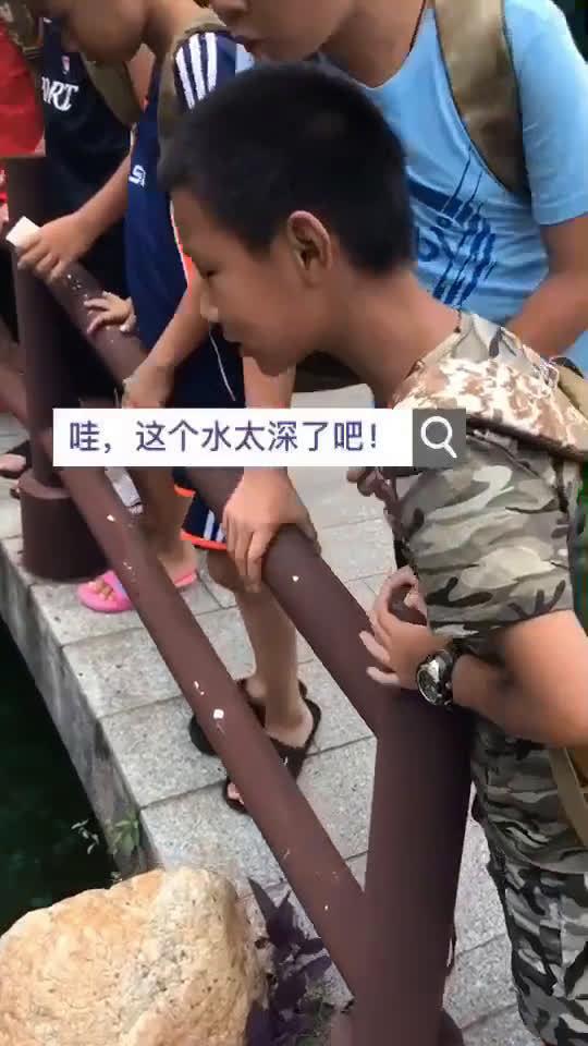 笑死了,小孩子都这么可爱的吗