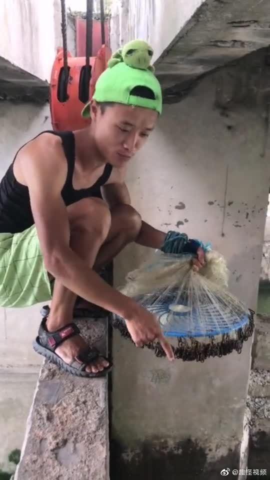 这样捕鱼…看着过瘾。。