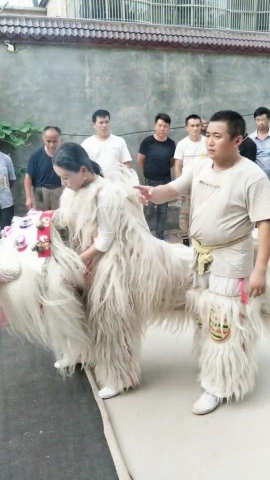 很少有看到女狮子,为她点赞。中国文化传承,你是最美的