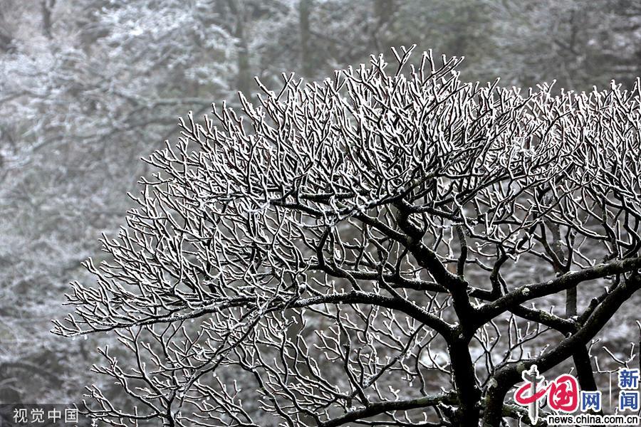 安徽黄山:雾凇云海景观美不胜收