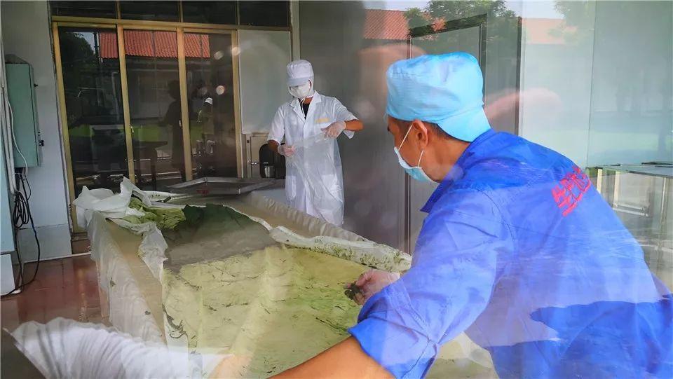 占地150亩总投资6亿元!微藻大健康生物项目开工