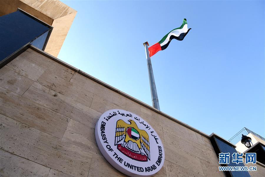 美议员:特朗普与利比亚国民军司令的通话引起地区混乱