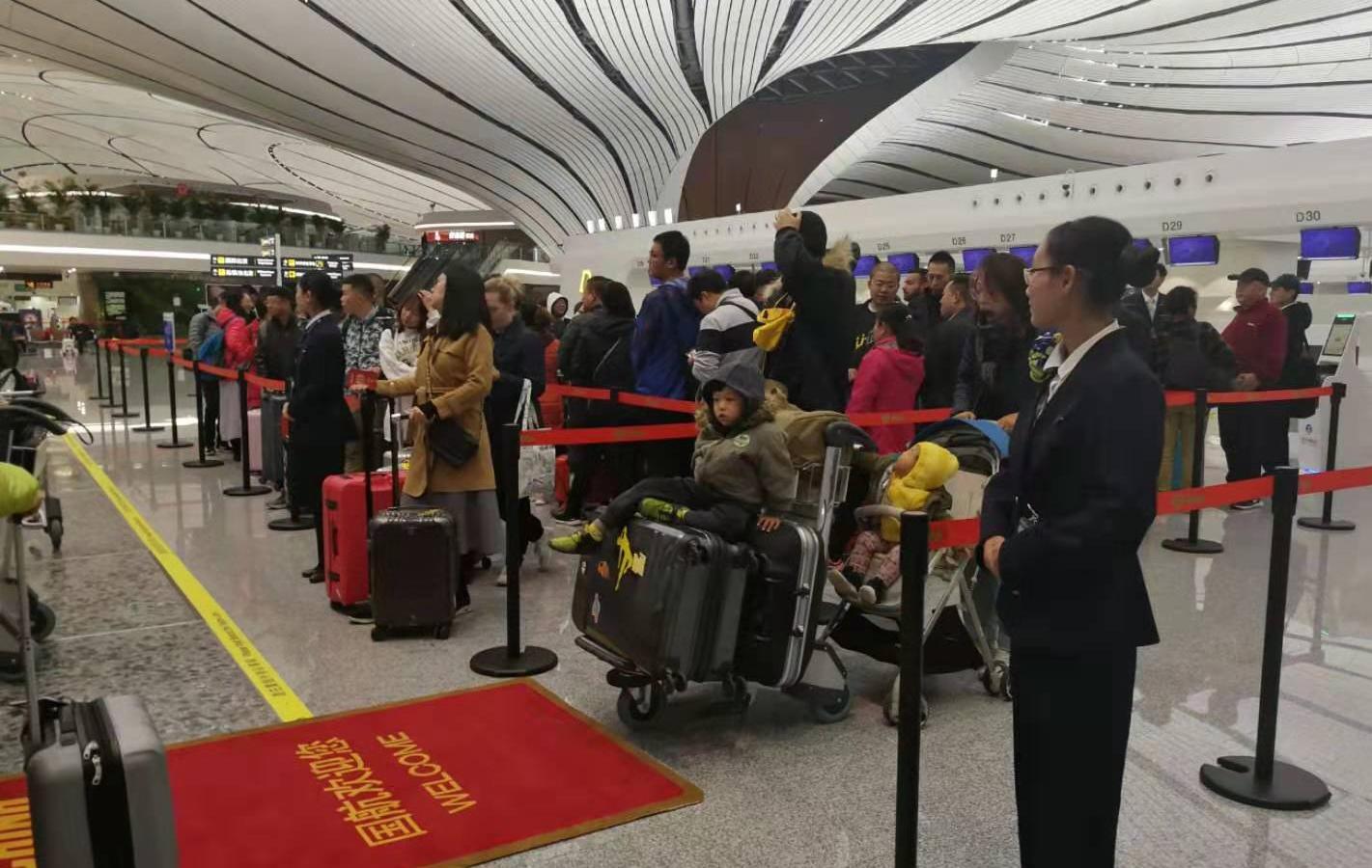 正版bbin平台代理 - 日报:2019年12月9日中国外三元大猪价上涨