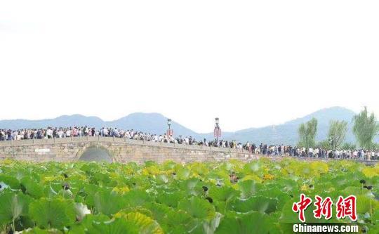 杭州西湖游人如织。 李朝韵 摄