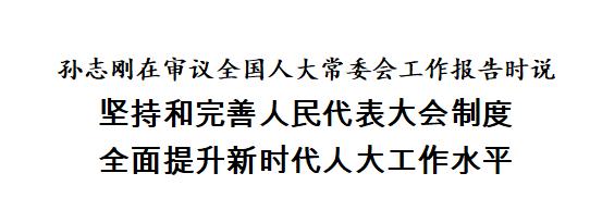 孙志刚在审议全国人大常委会工作报告时说 坚持和完善人民代表大会制度 全面提升新时代人大工作水平