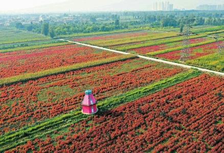 http://www.hljold.org.cn/shehuiwanxiang/248381.html