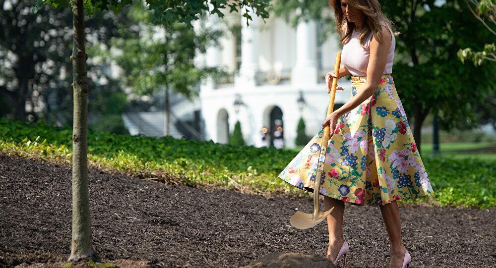 穿高跟鞋种树 美第一