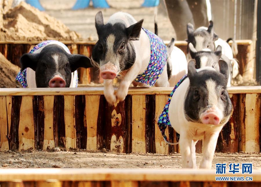 中亚两国激烈交火 居民蹲墙后围观