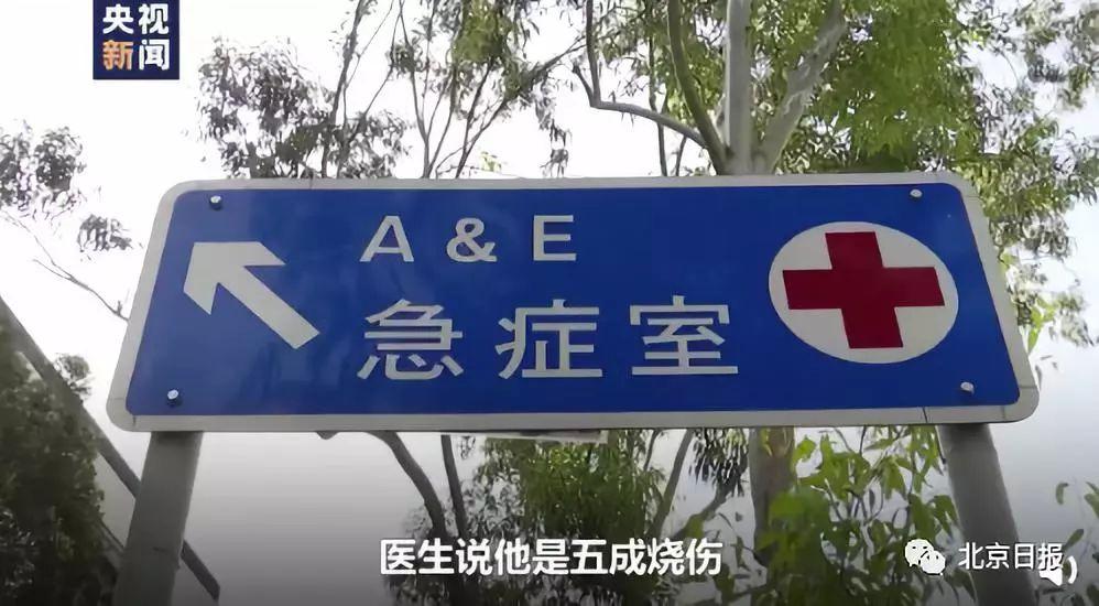 乐通娱乐吃饺子老虎机·又一次:海盗湾疑正在测试一个流媒体功能
