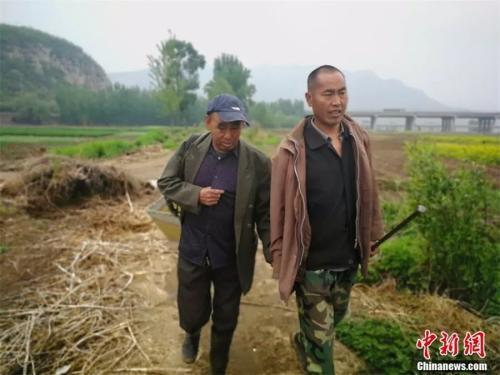 贾海霞(左)和新搭档贾红旗(右)走在乡间的小路上。李晓伟摄