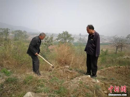 贾文其(右)和村民刘有才(左)等4位孤寡老人一起合作种树。李晓伟 摄