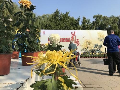 圆明园2018金秋游开幕 系列活动庆改革开放40周年