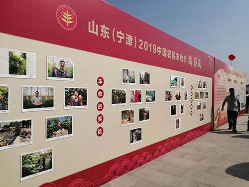 """科技日报报道宁津:破解进口依赖,这个欠发达县搞出了七粒""""自主种子"""""""