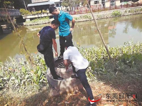 /shehuiwanxiang/303270.html