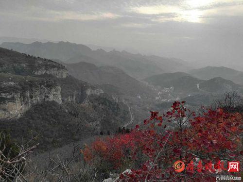 济南仨市民爬山时不慎迷路 多亏了民警和护林员指路