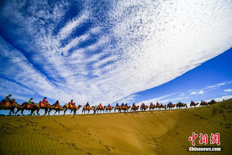亚冠全北现vs天津权健直播