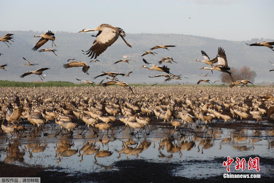 蓄滞洪区:更大的水,更少的地,可有良策?_av国产直播套路深
