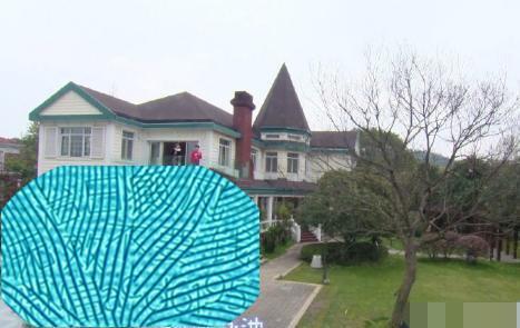 沈梦辰豪宅曝光,独栋别墅价值过亿,泳池边的青蛙石像有讲究