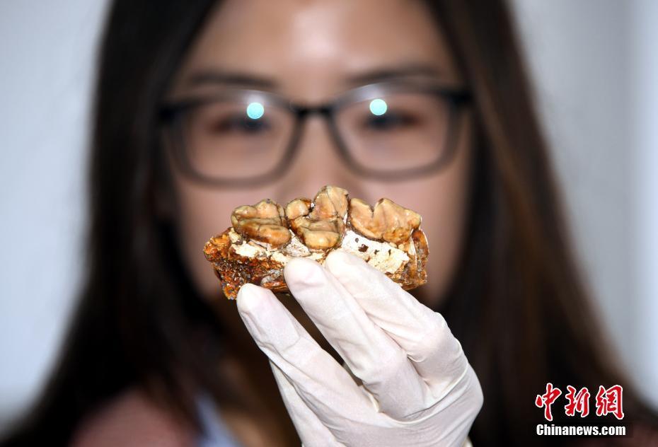 2021年中国大学中医诊断学期末答案