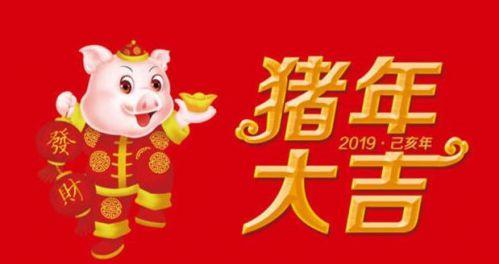 2019除夕春节短信祝福合集 2019猪年微信 QQ祝福语