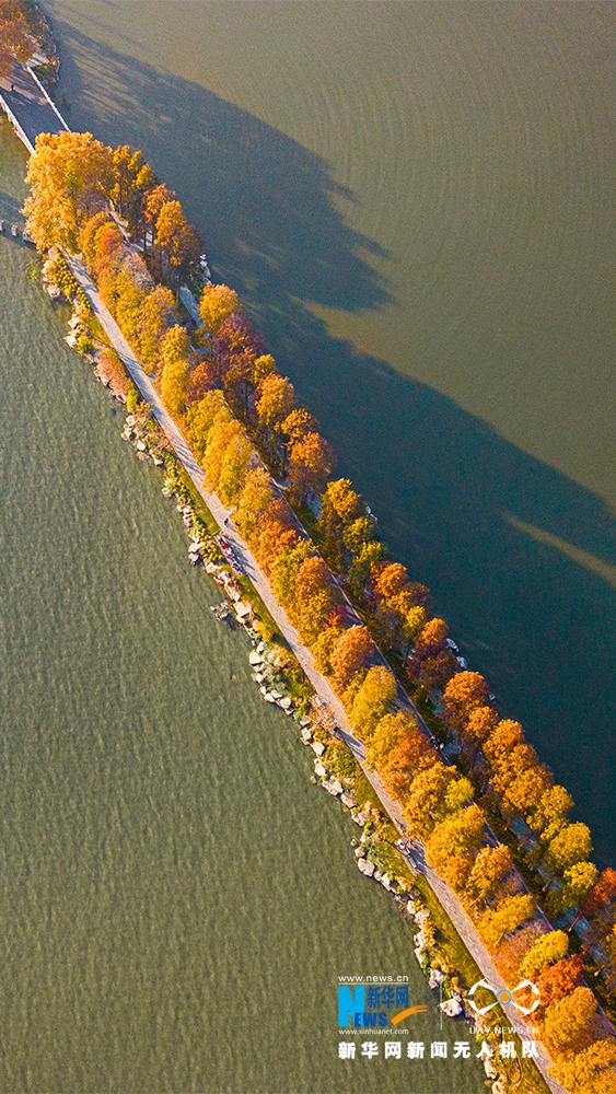 缤纷东湖绿道――初冬的暖色调