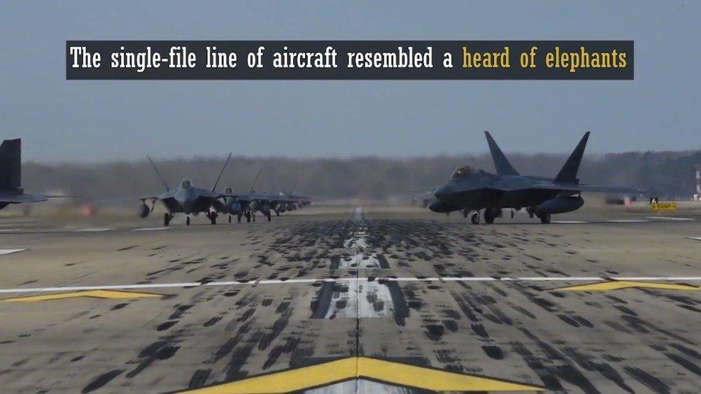 美国空军告诉你什么叫大象漫步