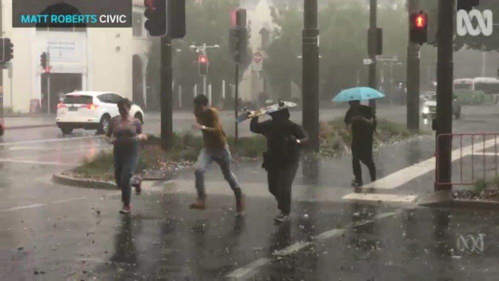 澳洲的新劫难:雹灾……高尔夫球大小的冰雹铺天盖地而下,把树枝