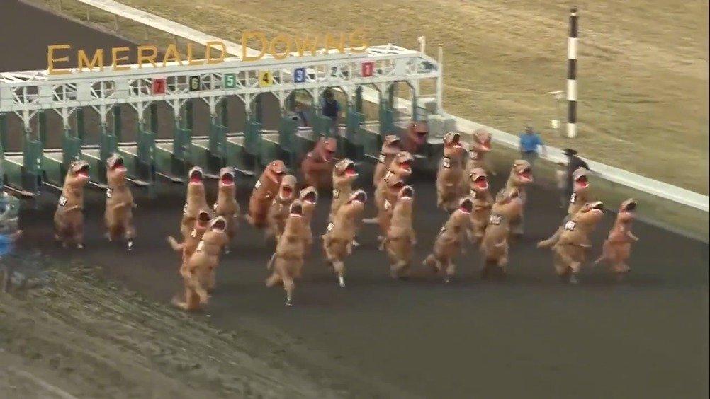 哈哈哈哈哈哈哈一帮恐龙赛跑,也太可爱了