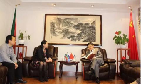 中国美术家协会一行拜访中国驻约翰内斯堡总领馆