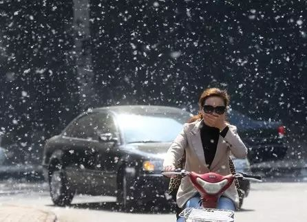 """强冷空气来袭!31℃到最低7℃!济南将""""一秒入冬""""!今日杨絮已纷飞,要持续一个月!好消息是……"""