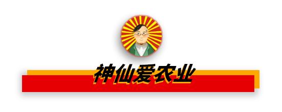 满堂彩app新版本下载,宁波热电三季度净利1.1亿 同比下滑36%