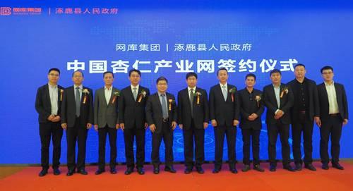 网库助力县域发展,中国杏仁产业