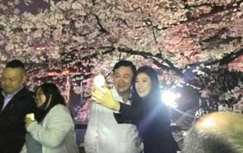 英拉及他信被指访日期间在樱花树下大玩自拍。(图源:《曼谷邮报》)
