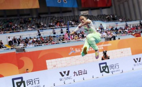 视点   第十五届武术世界锦标赛在上海举行