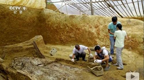 截图:考古队正在进行挖掘