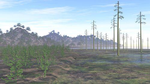 地空学院薛进庄等在早期陆生植物演化方面取得重要进展