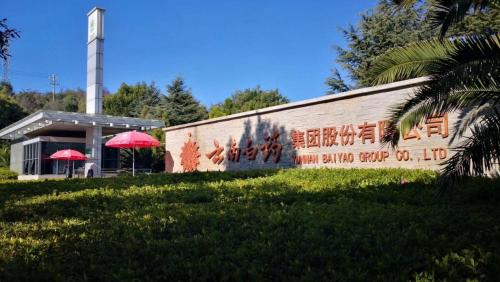 中国新零售集团&云南白药集团强强联合布局