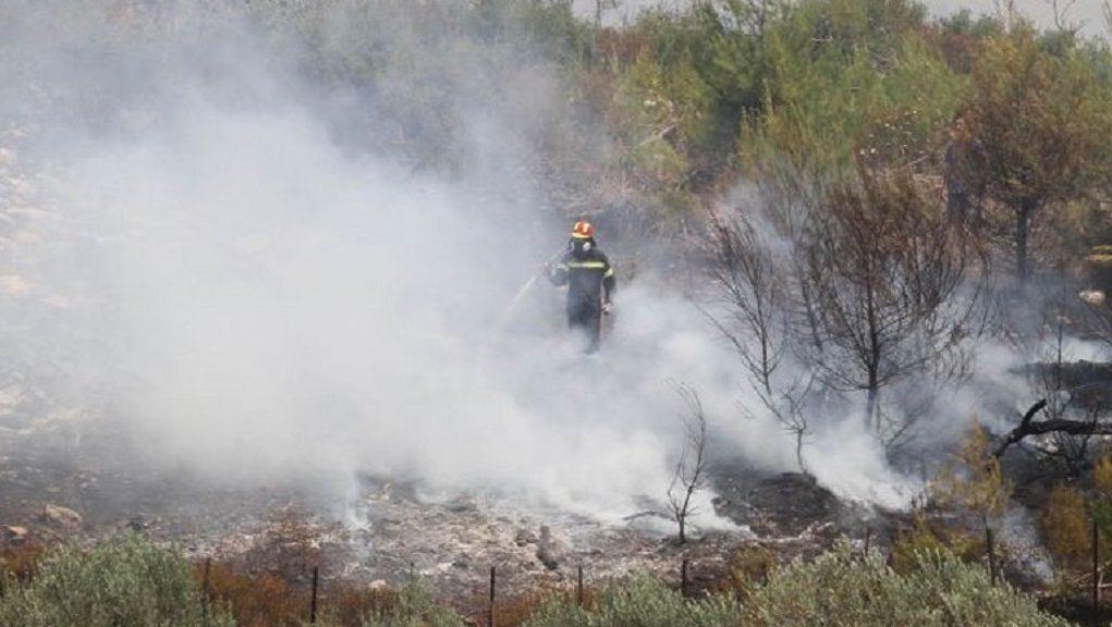 希腊最大难民营附近发生火灾