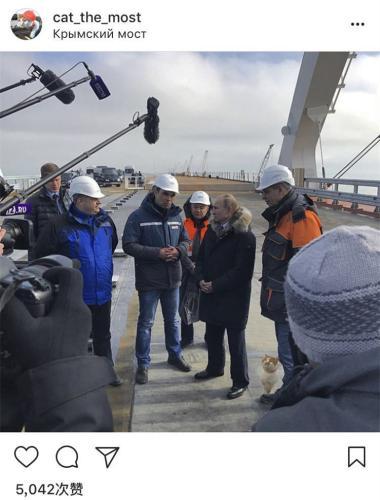 """普京在视察克里米亚大桥期间与猫咪同框。(图片来源:猫咪""""小桥""""的社交网站主页截图)"""