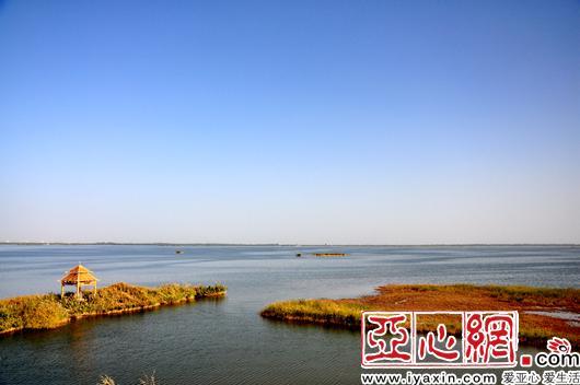 新疆巴楚县国庆期间掀起红色旅游热