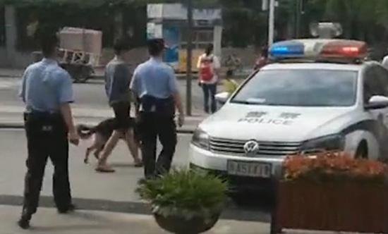 民警赶至现场后迅速带离伤人犬只。视频截图