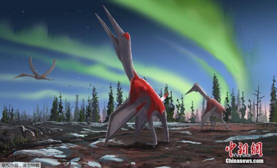 """9月10日,英国伦敦年夜教玛丽女王教院公布的图片显现了一个名为""""波瑞阿斯冰龙""""的翼龙新物种抽象。"""